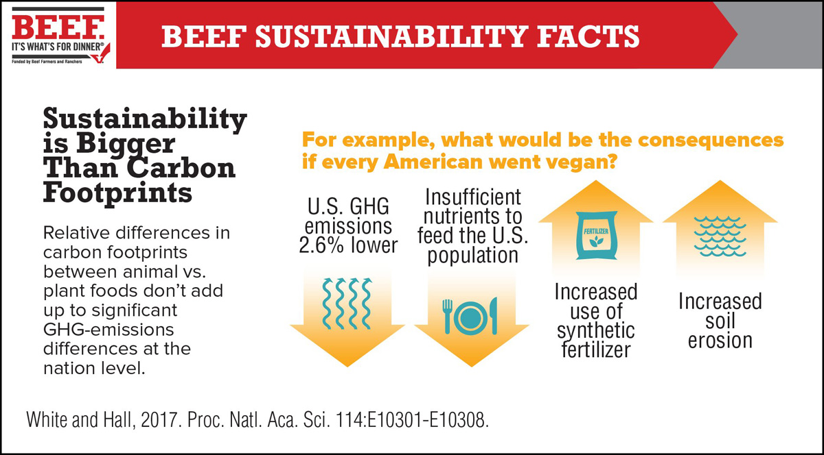 BEEF SUSTAINABILITY FACTS