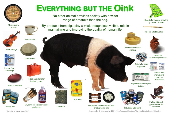 EVERYTHING BUT THE OINK